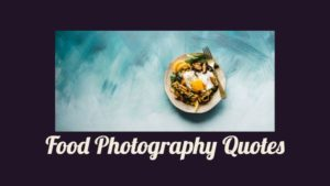 Food Photography Quotes