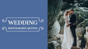 Wedding Photography Quotes
