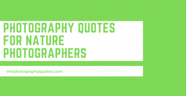 Photography Quotes for Nature Photographers